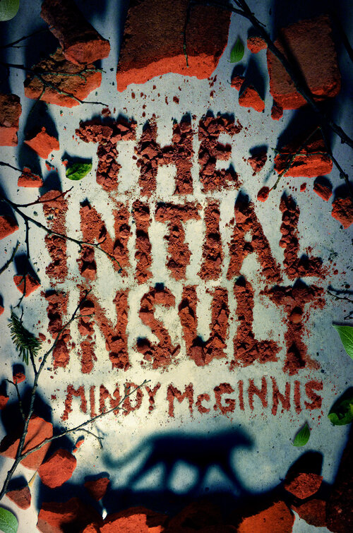 The Initial Insult by Mindy McGinnis book cover