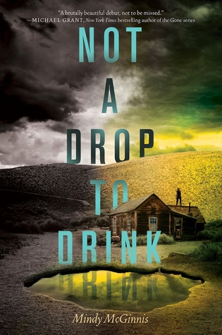 Not a Drop to Drink by Mindy McGinnis book cover